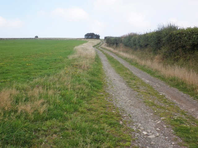 Bridleway to Parracombe Common