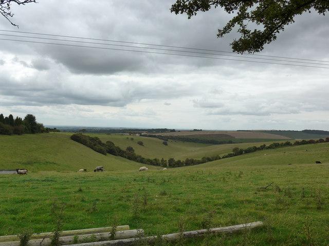 South Downs Way, Exton to Buriton (144)