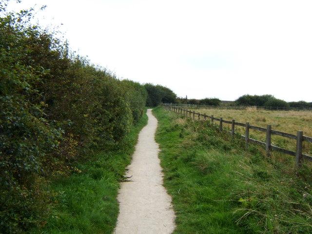 Path towards South Landing