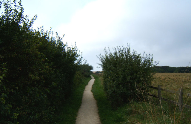 Path towards South Landing