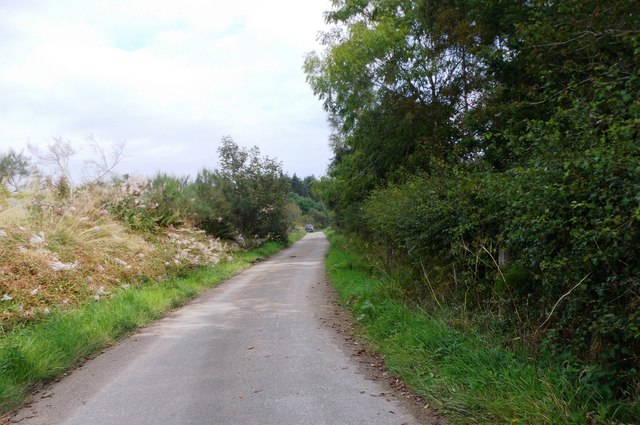 A road to Wester Beltie Croft