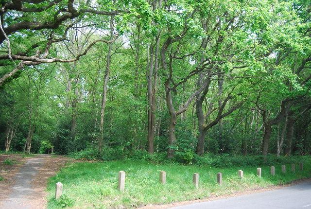 Tunbridge Wells Common