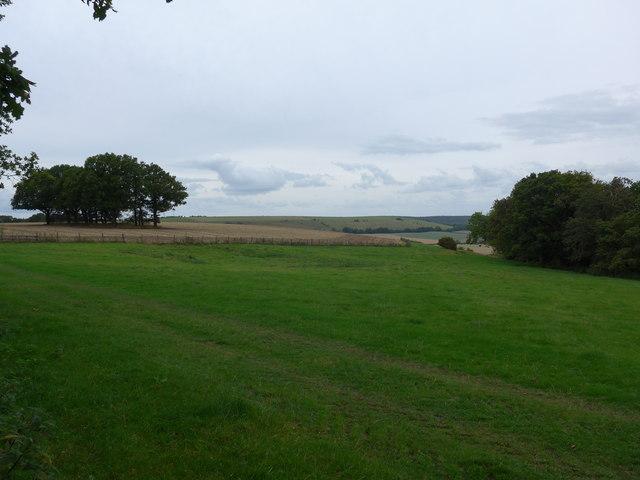 South Downs Way, Exton to Buriton (180)