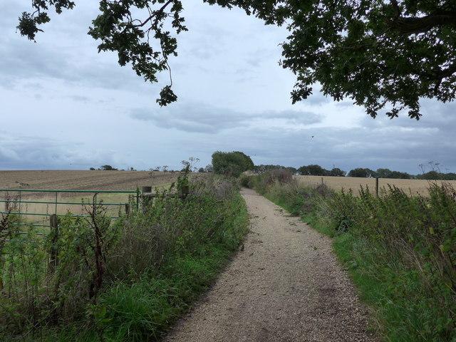 South Downs Way, Exton to Buriton (181)