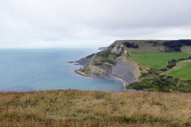 Worth Matravers Walk 04
