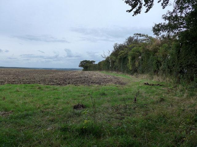 South Downs Way, Exton to Buriton (184)