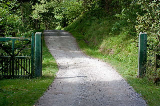 Track heading West through the woodland