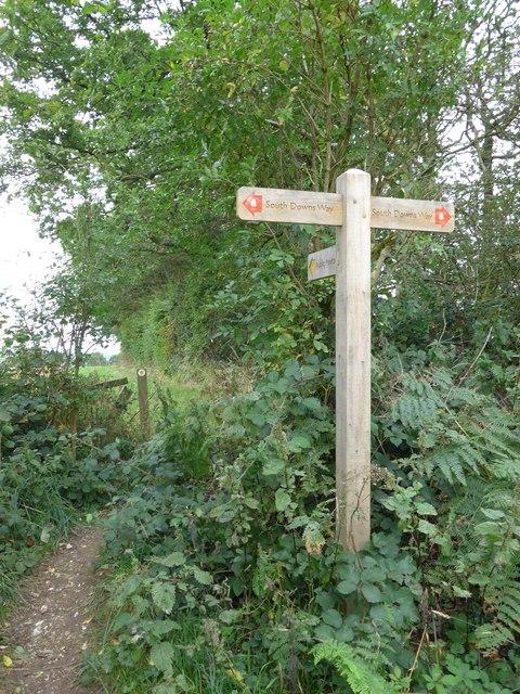 South Downs Way, Exton to Buriton (186)