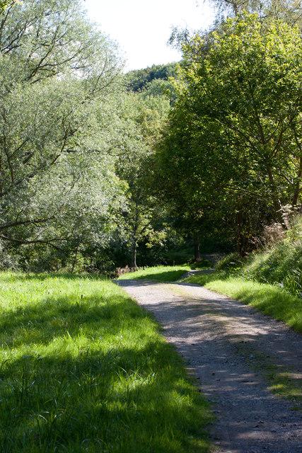 Track towards Dunsley