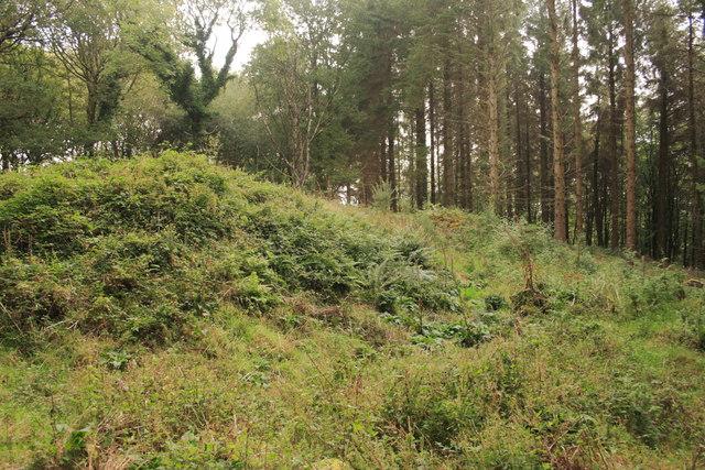 Earthwork in Houndtor Wood