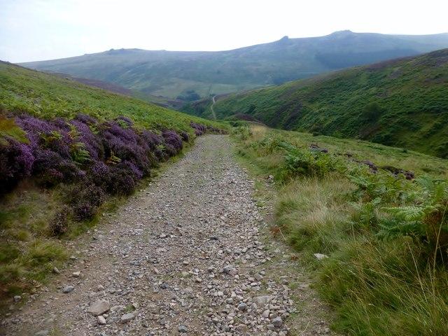 Path High Above The Hawsen Burn