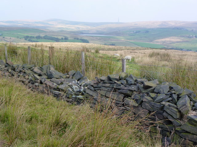 Ruinous dry stone wall and adjacent fence