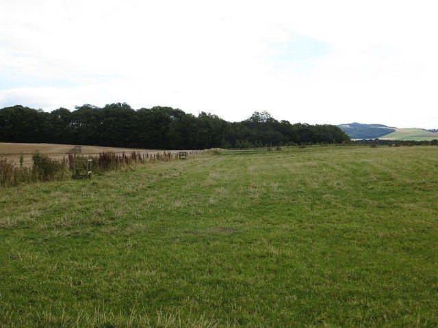 Fields, Gallowflat
