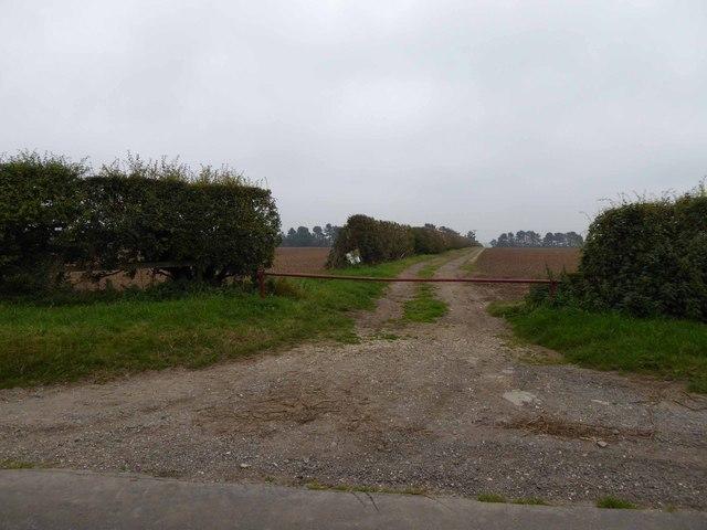 Farm track near Beelsby