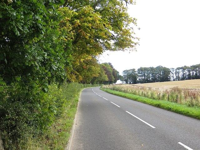 Road near Errol