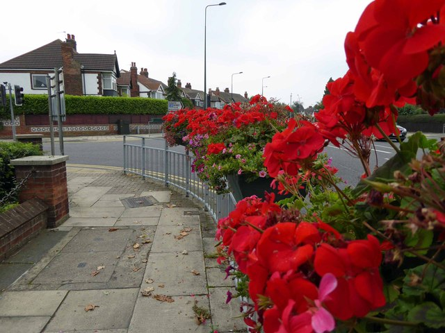 Grimsby in bloom