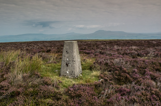 Trig Pillar Burn Moor