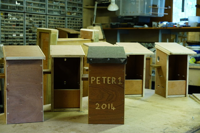 Red Squirrel Nest Box Construction