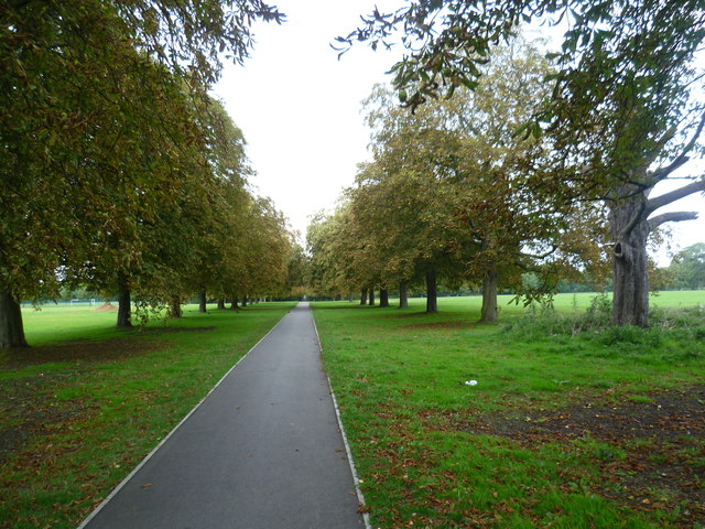 Path on Scotch Common