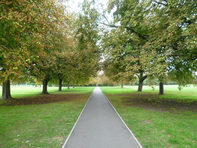 Path across Scotch Common