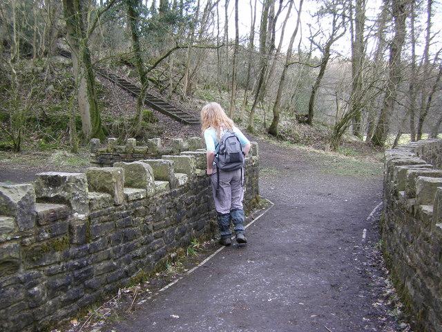 Stone footbridge in Over Hacking Wood