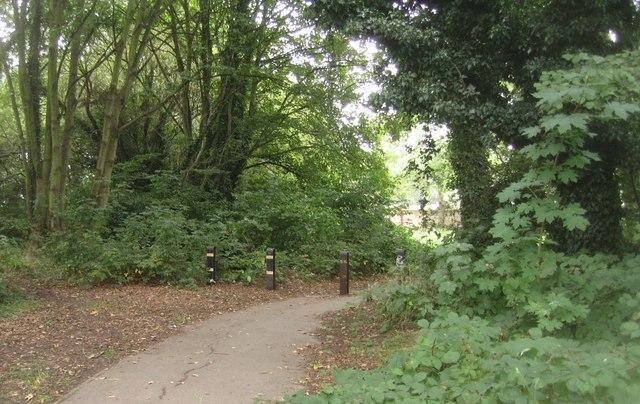 Path to Wren Way