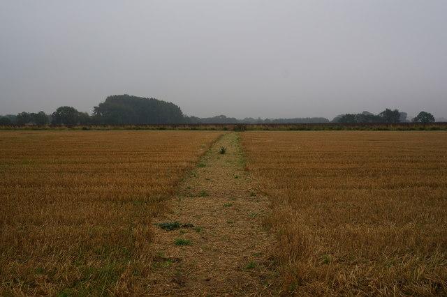 Path leading to Lopham Lane