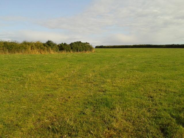 Field next to Treroosel road