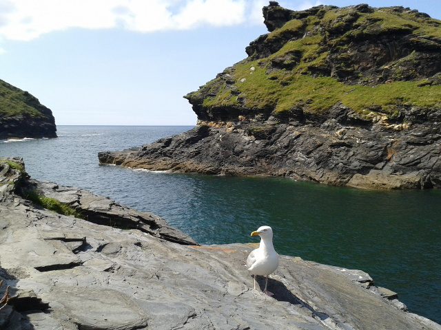 The river mouth at Boscastle Harbour