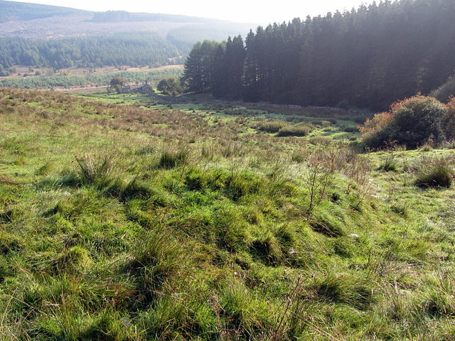 Old track above site of Bells Chapel