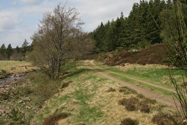 Forestry road west of the Baileguish footbridge