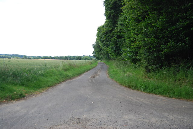 A narrow Suffolk lane