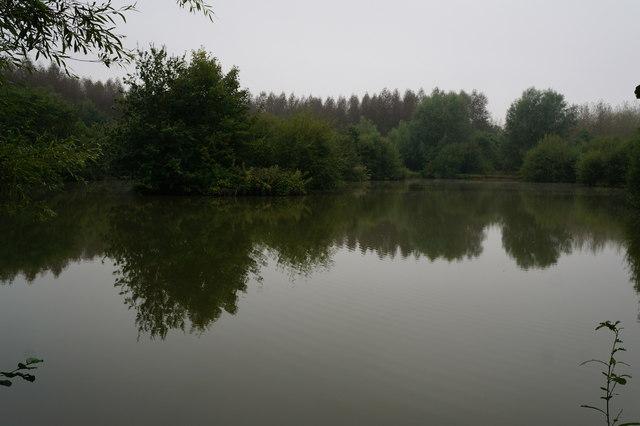 Lake at Mount Pleasant West Wood