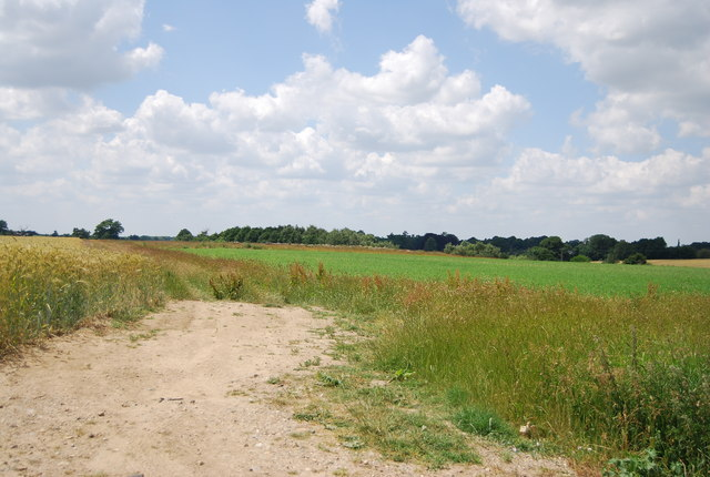 Farmland by Coxhall Rd