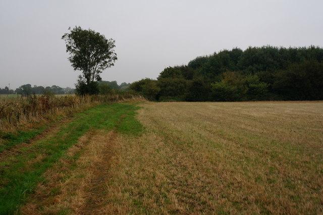 The Wanderlust Way towards Brigsley