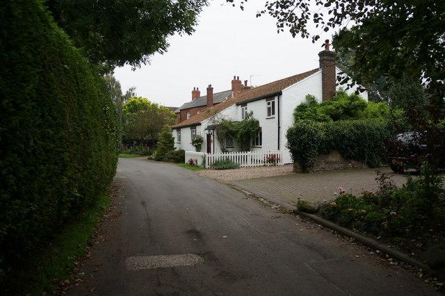 Houses on Waithe Lane, Brigsley