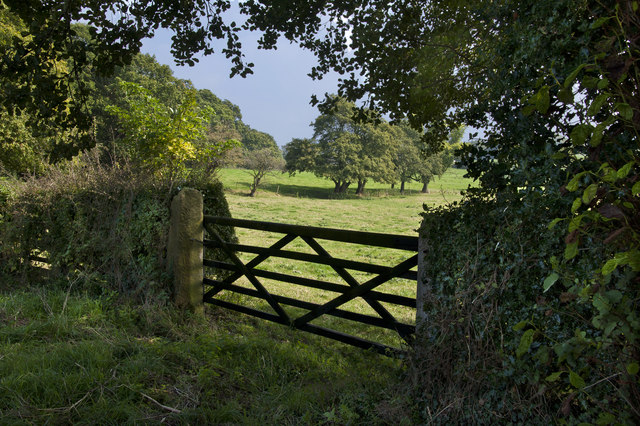 A gate and the field beyond