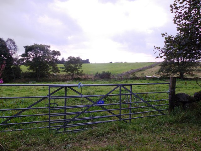 Makeshift gates near Gownieburn cottage