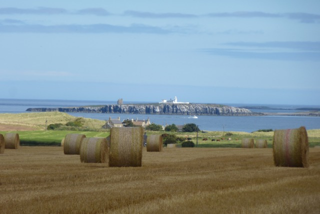 Bales and Inner Farne