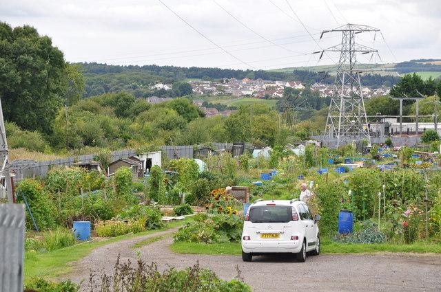Bridgend : Allotment Gardens