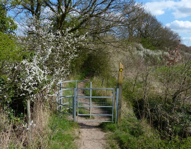 Kissing gate leading into Pear Tree Wood