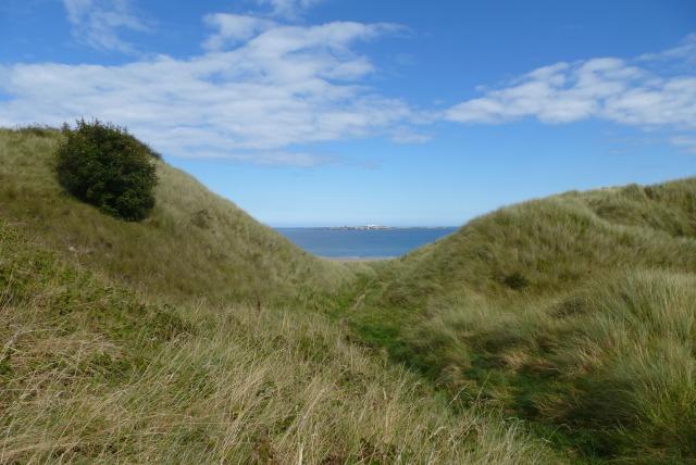 Dunes and Inner Farne