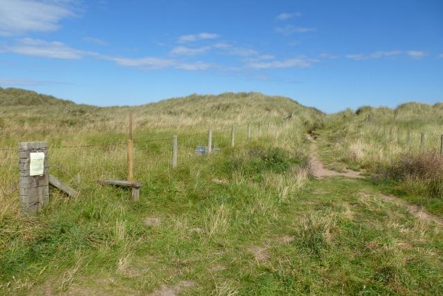 Path onto St. Aidan's Dune