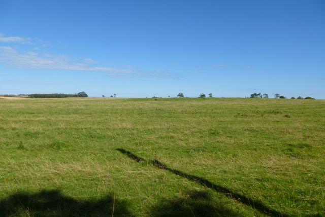 Farmland near Cutthroat Plantation