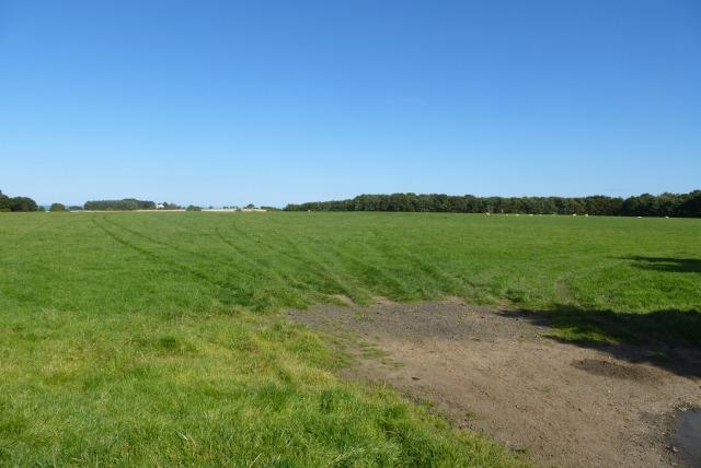 Farmland opposite Embleton Cemetery