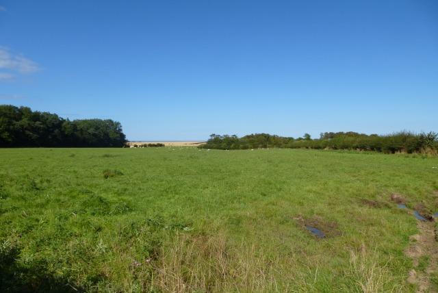 Farmland near Hollow Plantation