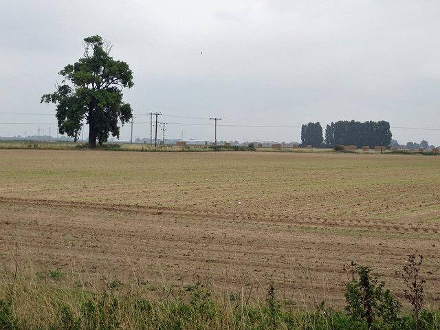 Flat farmland, Whaplode Marsh