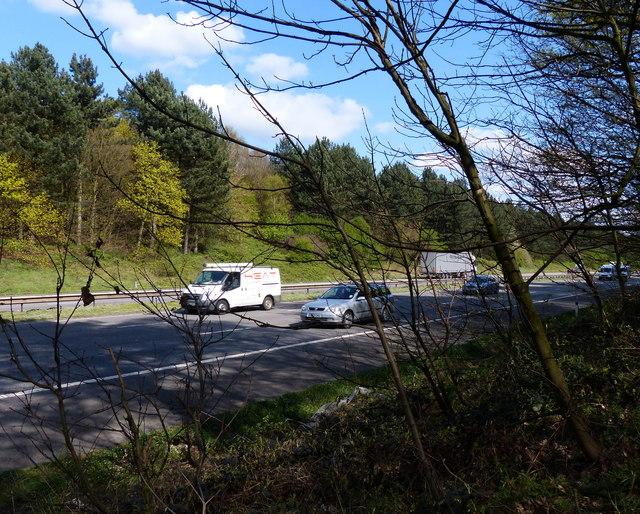 The M1 motorway cutting through Martinshaw Wood