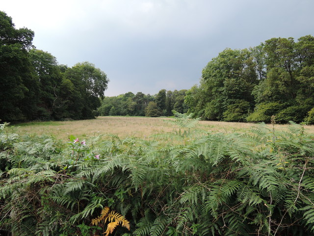 Bovey Tracey: on the Parke estate