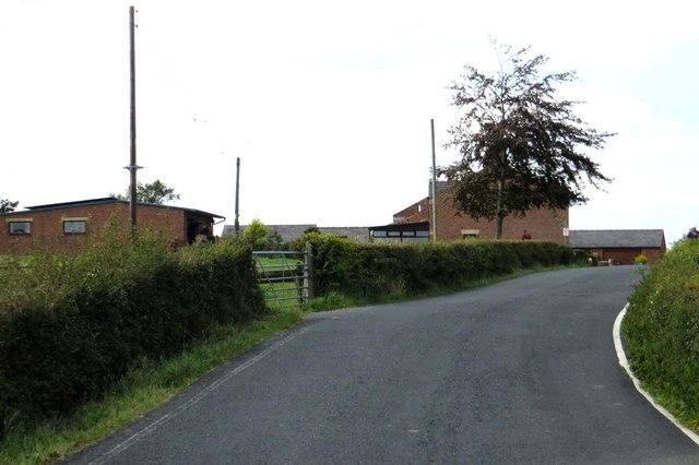 Kilcrash Lane by Hoole Farm